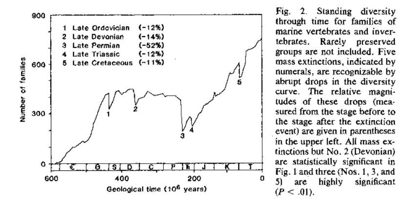 Sepkoski curve.jpg